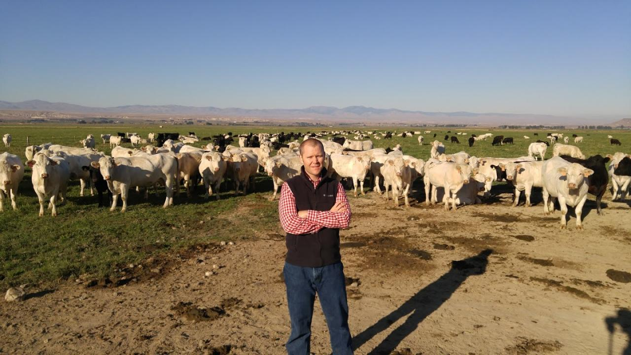 Justin Buchanan, a UC Davis postdoctoral researcher for Alison Van Eenennaam of the Department of Animal Science, was hired by Simplot as a geneticist at the project's conclusion.